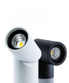 Axis Surface Mounted Downlight