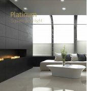 Platinum Square
