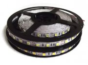 Strip-5050-60LED/m